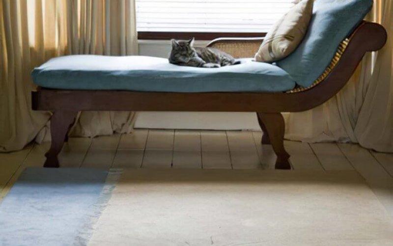 Luxury Office Carpets & Rugs