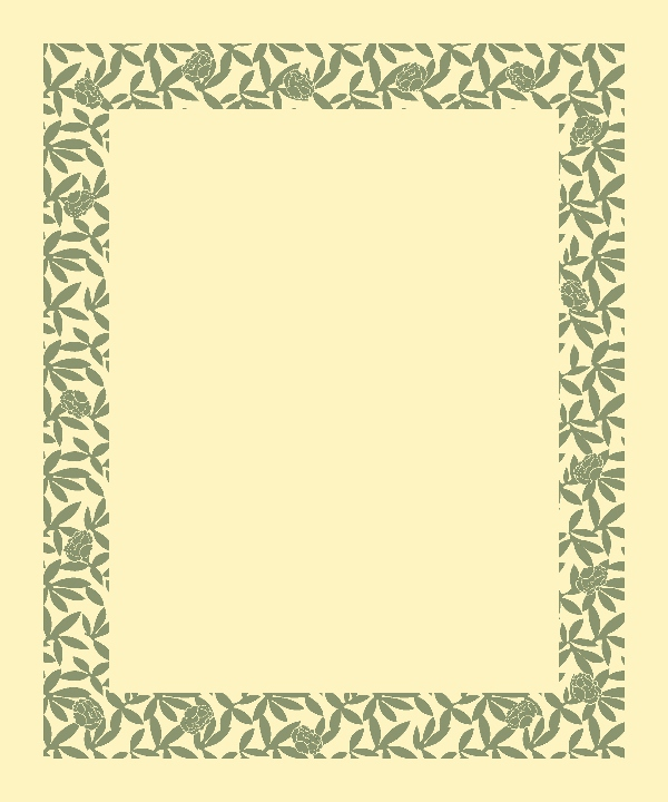 Borders Designs | New Forest 1