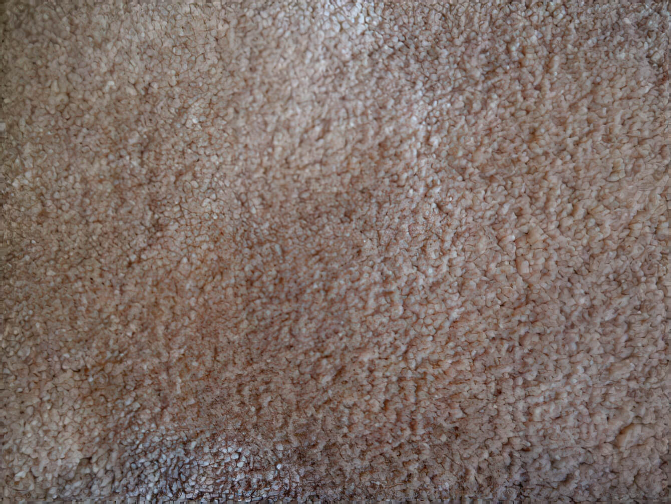 Machine Woven Carpets - Craigie Stockwell