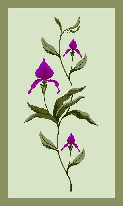 Modern Designs | Natural Bloom
